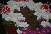 Служение архипастыря: Праздник Воздвижения Честного и Животворящего Креста Господня